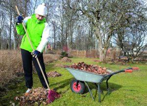 Заботы садовода в марте